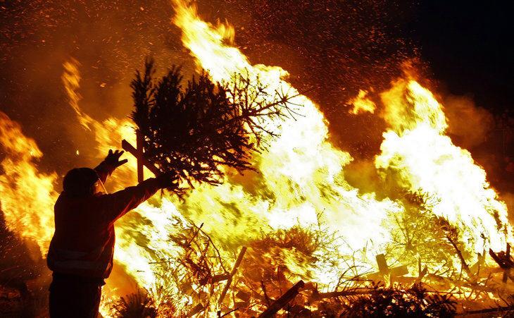 Christmas_tree_farm_fire